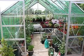 پرورش گل و گیاه در گلخانه | بیزینس پلن پرورش گل